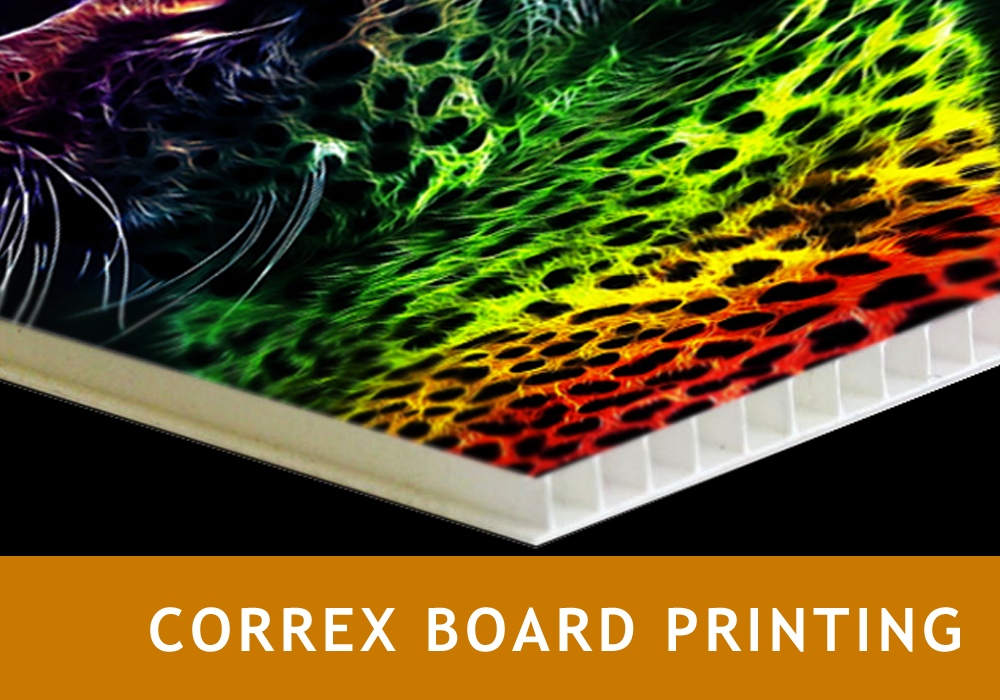 Correx Board Printing Same Day Printing Sameday